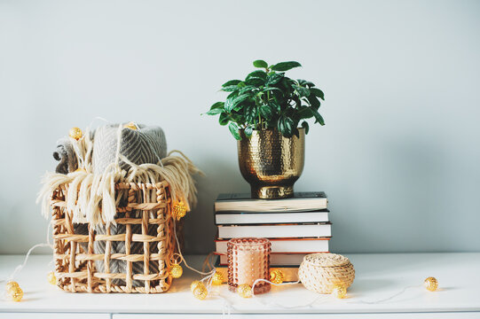 Close-up Of Potted Plant With Books On Table