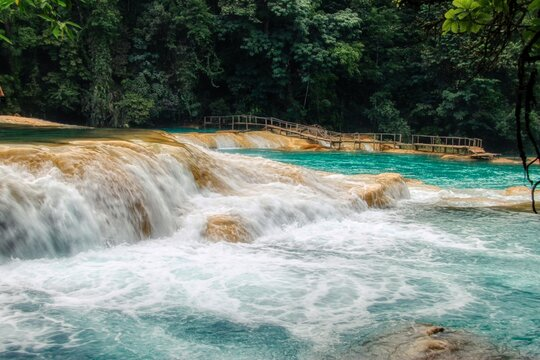 Scenic View Of Waterfall Agua Azul In Forest