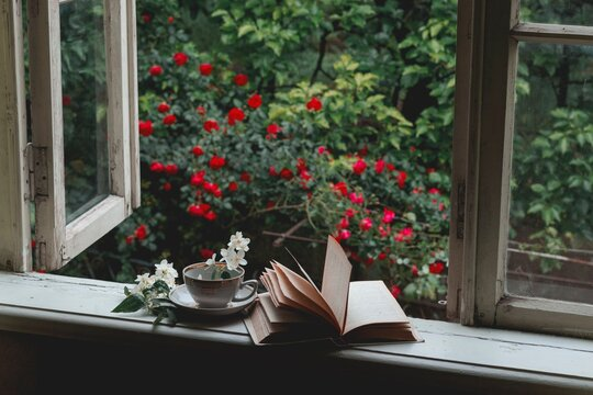 Cup With Flower And Book