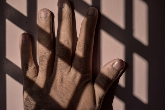 Close-up Of Human Hand On Wall