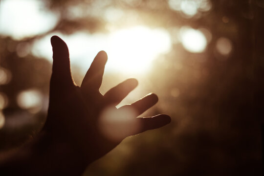 Close-up Of Person Hand Against Sun