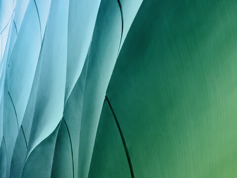 Full Frame Background Of Curve Pattern On Green Wall