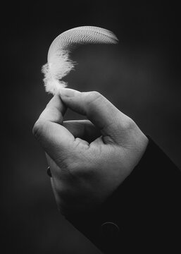 White Feather Held By Female Hand