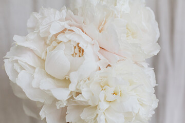 Beautiful stylish white peonies bouquet close up on pastel beige fabric background. Floral aesthetic