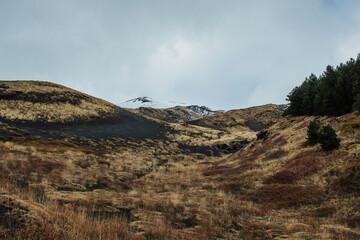 Etna Volcano Landscape Fototapete