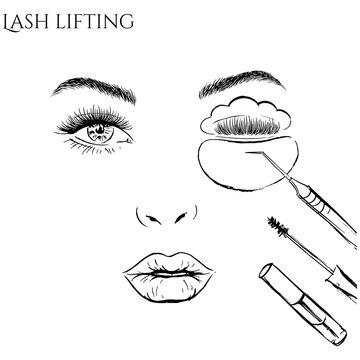 Eyelash lifting illustration.
