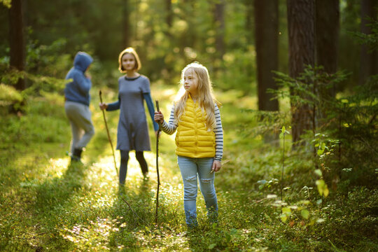 Two cute young sisters having fun during forest hike on beautiful summer day. Children exploring nature. Active family leisure with kids.