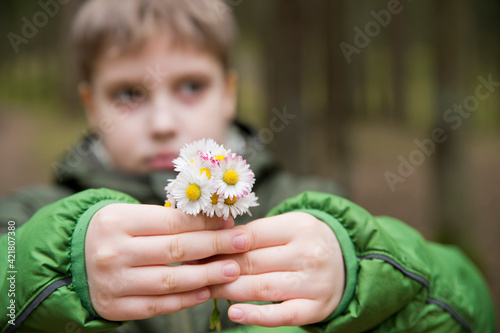 Mothers day theme. Boy holding bunch of meadow sunshine flowers. Spring celebration bouquet. Picture in the forest. Early flowers. Emotional present.