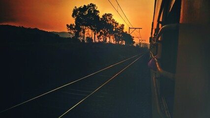 Silhouette Trees By Railroad Tracks Against Sky During Sunset
