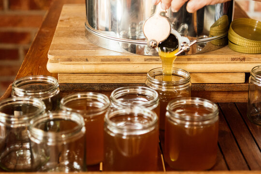 Beekeeper At Work - Honey Production