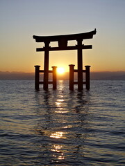 the sun rises from behind the lake between the shutters of the Shinto torii gates, standing in the water