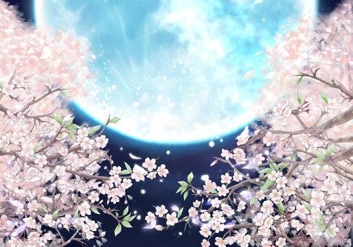 夜桜と満月のイラスト/ブルームーン