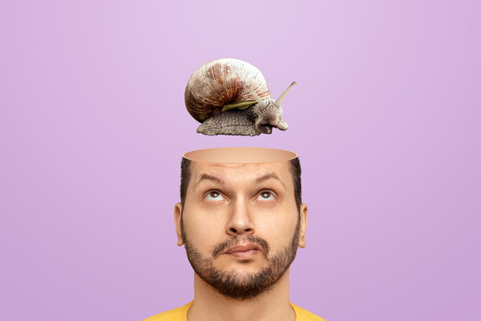 Slow brain concept, problems with head functions, alzheimer's. A man has a snail in his head instead of a brain.