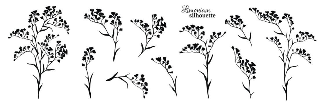 Set of black limonium branches. Vector illustration