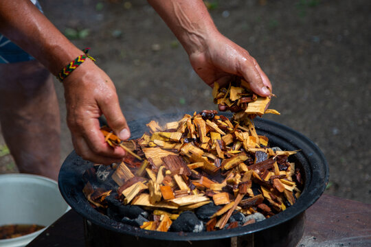 Adding soaked wood chips to the burning charcoal For Smoking Meat On Barbecue.