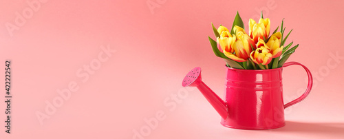 A bouquet of tulips as a gift for March 8, Mother's Day, Valentine's Day. Easter decor. Copy space. Flowers tulips on a pink background. Banner