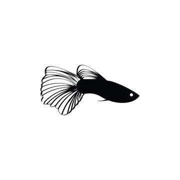 Guppy Fish icon isolated on white background, guppy icon, guppy logo, Guppy Fish vector