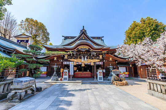 春の櫛田神社 福岡県博多区 Kushida Shrine in spring Fukuoka-ken Hakata-ku