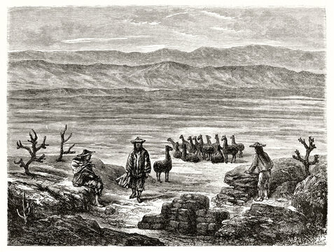 pampilla territories, Peru. Men and llamas in foreground over a huge flatland with mountain range far in the distance. Ancient grey tone etching style art by Riou, Le Tour du Monde, 1862