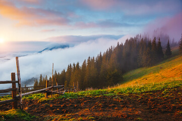 Wall Mural - Panoramic view of the misty mountains in the countryside.