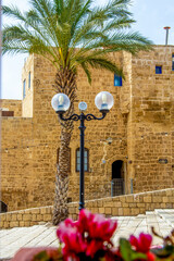 Tel Aviv, Israel - March 15, 2021: blured flowers and on one of the narrow streets of old Jaffa