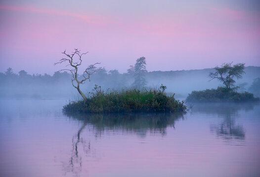 Foggy Morning on Bog Lake