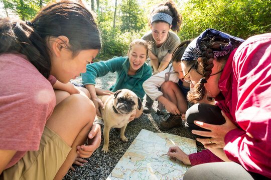 A group of girls reading a map while hiking the Appalachian Trail,  Mount Rogers National Recreation Area, Virginia.