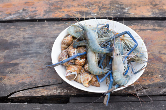 shrimp and mullug shell raw food for cooking barbecue