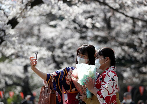 Kimono-clad women wearing protective face masks take selfie photos among blooming cherry blossoms amid the coronavirus disease (COVID-19) pandemic, in Tokyo