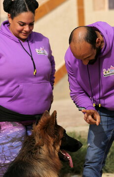 Bahaa Magdy, standing with his wife Hebatallah Adel, members of 'Aleefcom paxi for pets transport', interacts with a dog in Cairo