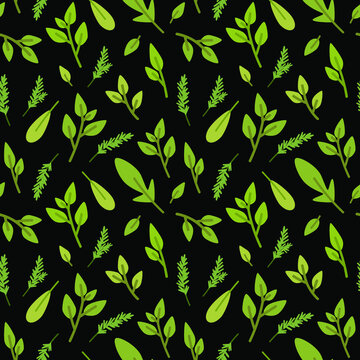 Vector seamless pattern in eco style. Herbs on black background. Stylized plants - rosemary, mint, basil. Simple summer natural style pattern for paper, textile, wallpaper, product design.