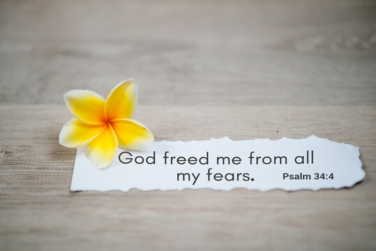 Bible verse quote - God freed me from all my fears. Psalm 34:4 . Spiritual or religious inspirational text message on white paper note with a yellow frangipani spring flower on white background.
