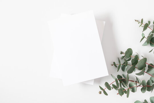 White paper empty blank, eucalyptus branch on white background. Invitation card mockup on white table. Flat lay, top view, copy space, mock up