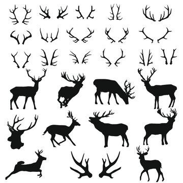 Deer Forest Wild Animals Silhouette Vector. Reindeer Stamp Illustration Antlers Collection.