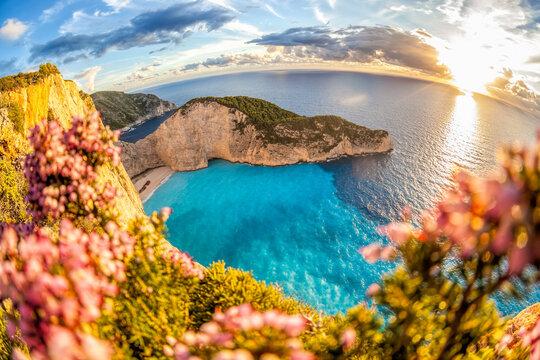 Navagio beach with shipwreck against colorful flowers on Zakynthos island, Greece