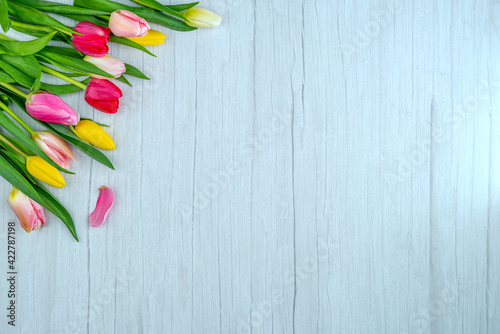 Tulips on a wooden surface. Floral background with copy space for placing text for the design of greeting posts, advertising campaigns, florist business cards, souvenirs, printing on fabric, cover