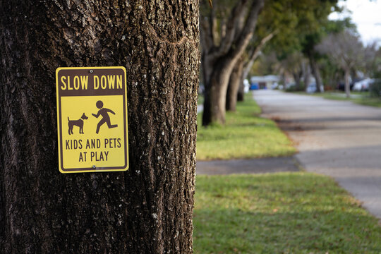 Slow Down Kids and Pets at Play Sign on a Neighborhood Street
