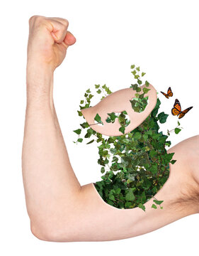 Male arm shows biceps, ivy growing out of arm - Concept of green energy