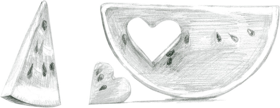 Watermelon slices drawn with a graphic pencil in an academic style. A heart carved in a watermelon slice. Isolated on a white background