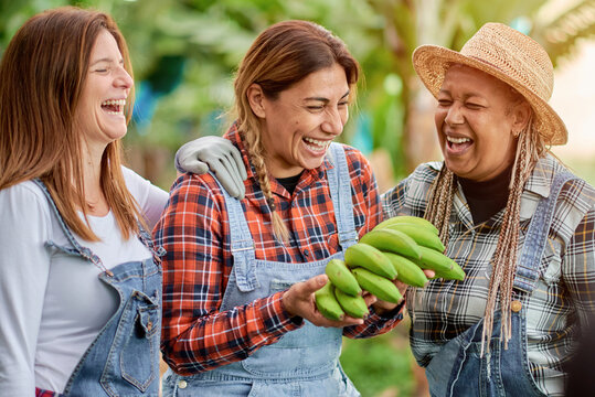 Happy multiracial women having fun together - Multigenerational friends smiling working on a banana plantation - Main focus on the face of the Latina woman
