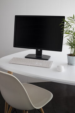 Modern computer with black monitor and white keyboard placed on desk with potted green plant in office
