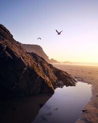 Dzika piaszczysta plaża o zachodzie słońca