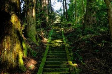 Fototapeta stairway to heaven