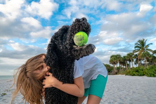 Young girl hugging her dog on the beach