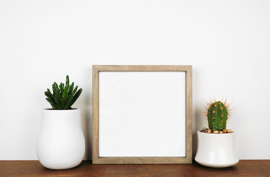 Mock up wood square frame with succulent and cactus plants. Wooden shelf against a white wall. Copy space.