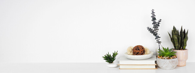 Home decor and houseplants on a shelf. White shelf against a white wall. Banner with copy space.