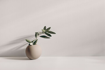 Modern summer still life photo. Beige ball shaped vase with green olive tree branch in sunlight with long shadows.Beige table wall background. Empty copy space. Elegant lifestyle Mediterranean scene.
