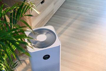Fototapeta Air purifier on wooden floor in comfortable home. Fresh air and healthy life. obraz
