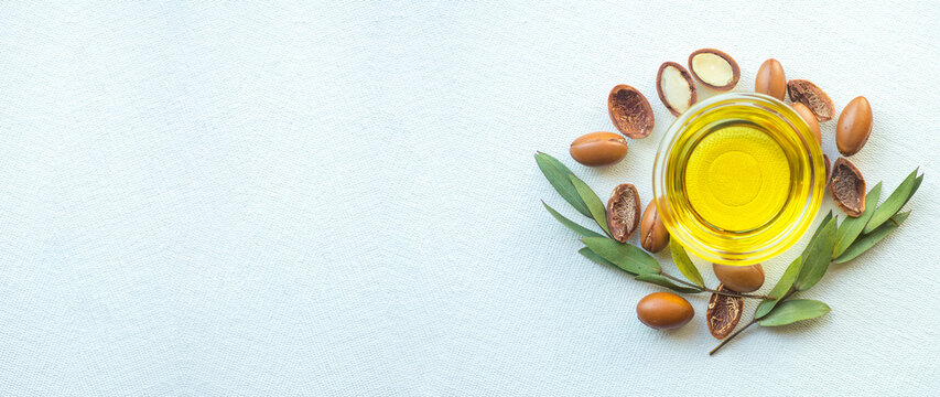 Argan seeds and oil isolated on a white banner background. Argan oil nuts with plant. Cosmetics and natural oils background
