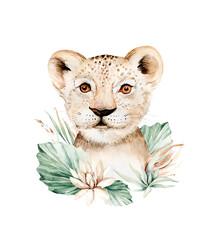Fototapeta Africa watercolor savanna lion, animal illustration. African Safari wild cat cute exotic animals face portrait character. Isolated on white poster design